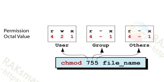 简述影响Linux系统文件读写执行权限的因素