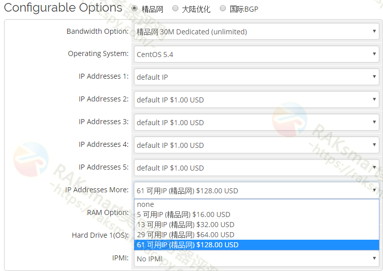 RAKsmart服务器配置选择