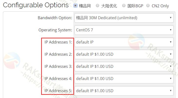 RAKSmart美国站群服务器默认5个IP