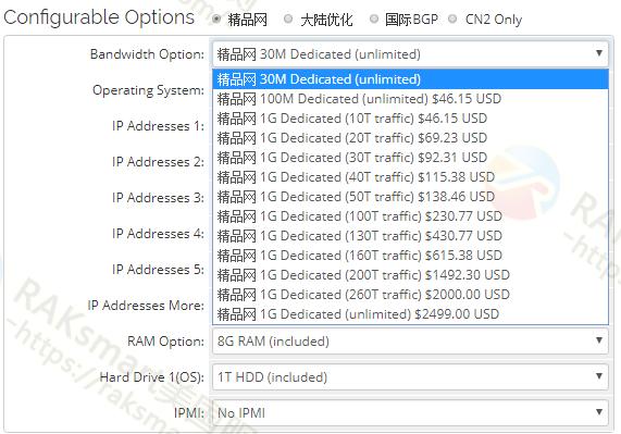 raksmart美国cn2服务器带宽配置