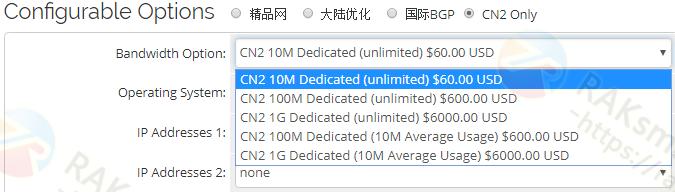 RAKsmart CN2线路带宽升级费用明细