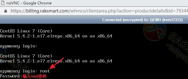 RAKsmart Linux VPS HTML5 VNC登录