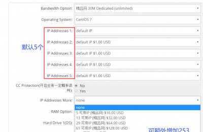 RAKsmart海外站群服务器推荐