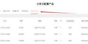 RAKsmart新增CN2 Only VPS