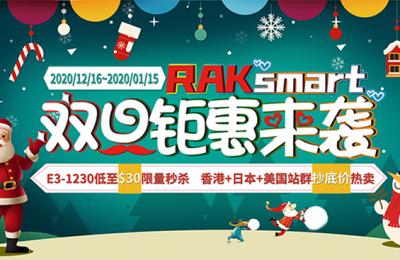 RAKsmart美国服务器双旦促销