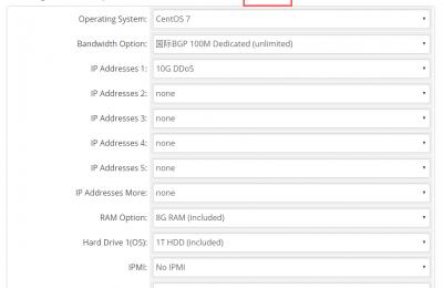 购买RAKsmart美国BGP服务器